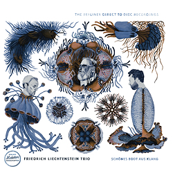 Friedrich Liechtenstein Trio: Schönes Boot Aus Klang